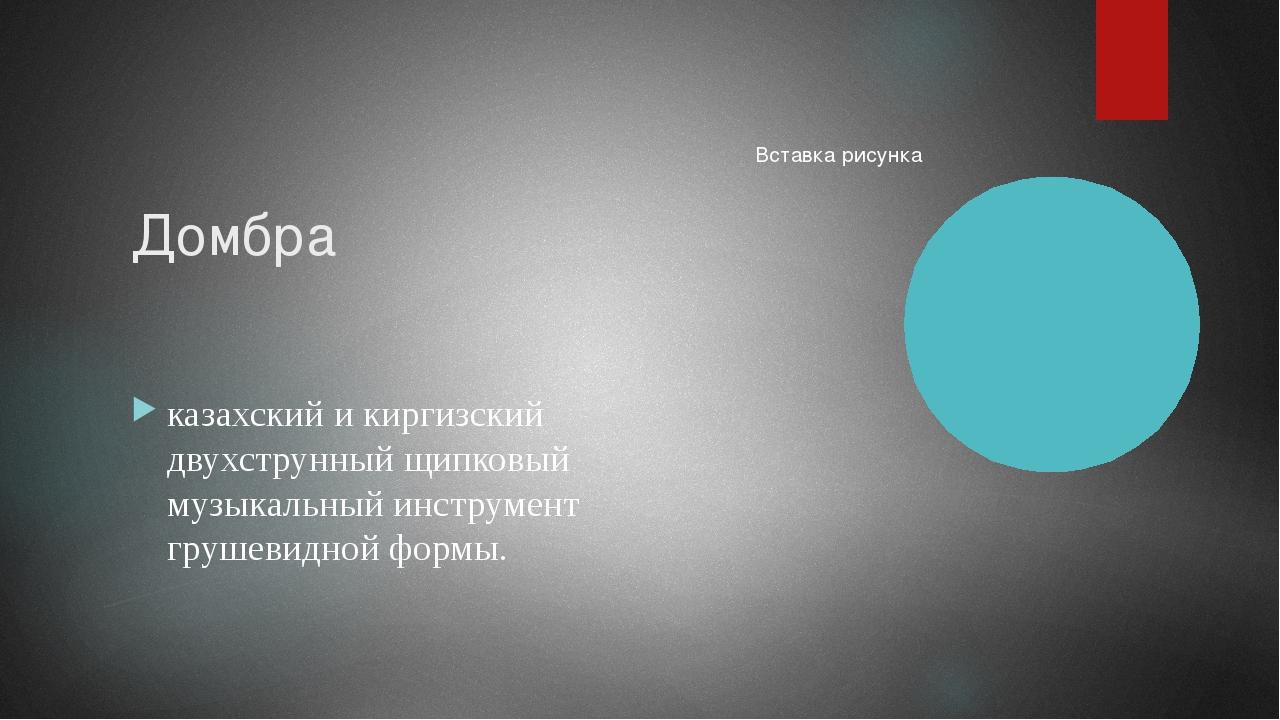 Домбра казахский и киргизский двухструнный щипковый музыкальный инструмент гр...