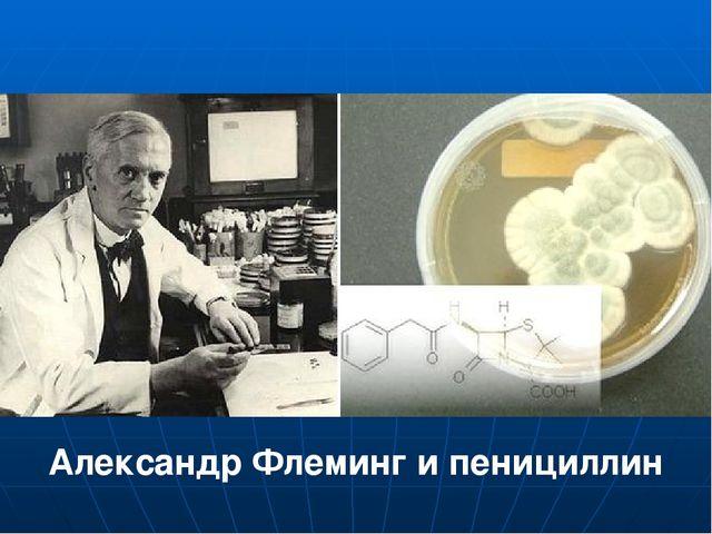 Александр Флеминг и пенициллин
