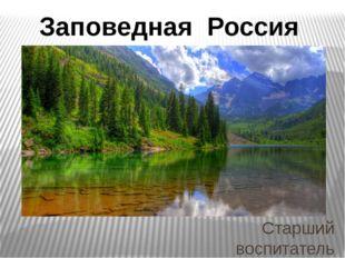 Старший воспитатель Детского сада № 95 ОАО «РЖД» Наталья Григорьевна Козина