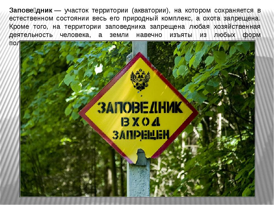 Запове́дник— участок территории (акватории), на котором сохраняется в естест...