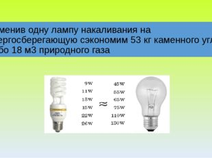 Заменив одну лампу накаливания на энергосберегающую сэкономим 53 кг каменног