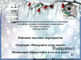 Муниципальное казенное общеобразовательное учреждение «Олымская средняя общео