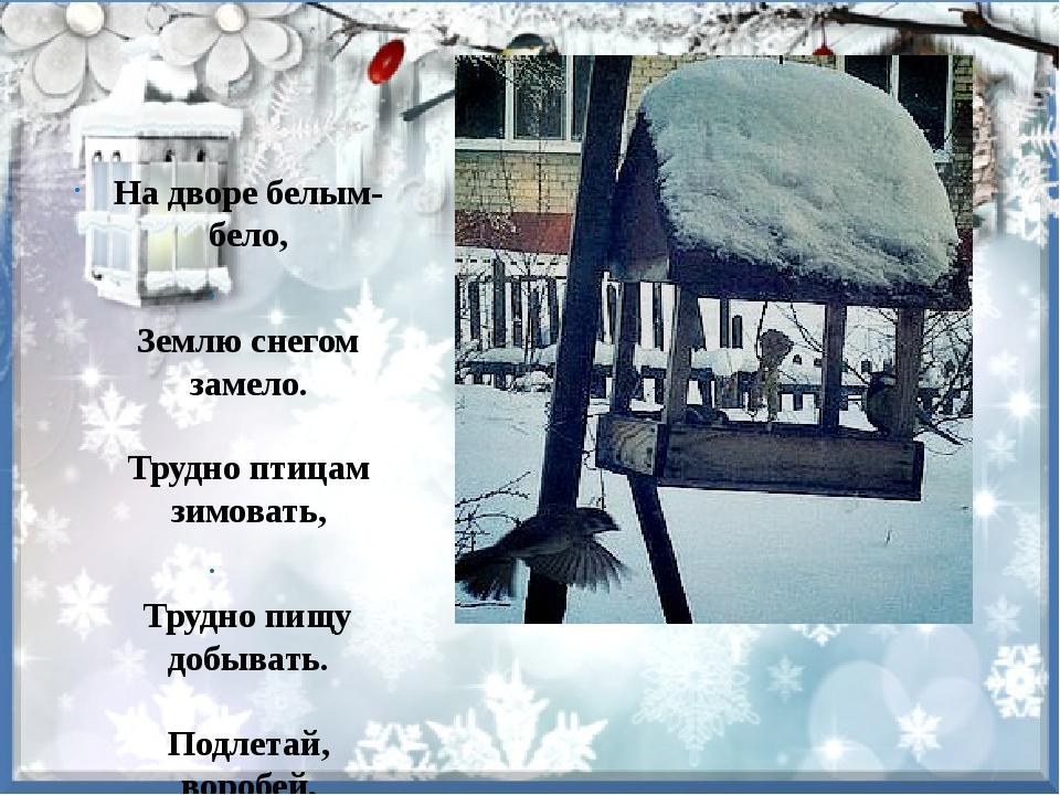 На дворе белым-бело, Землю снегом замело. Трудно птицам зимовать, Трудно пищ...