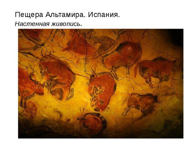 Пещера Альтамира. Испания. Настенная живопись.