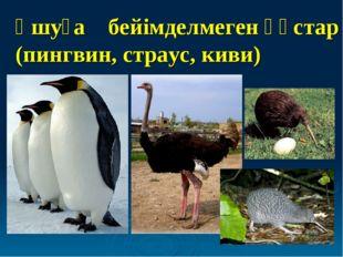 Ұшуға бейімделмеген құстар (пингвин, страус, киви)