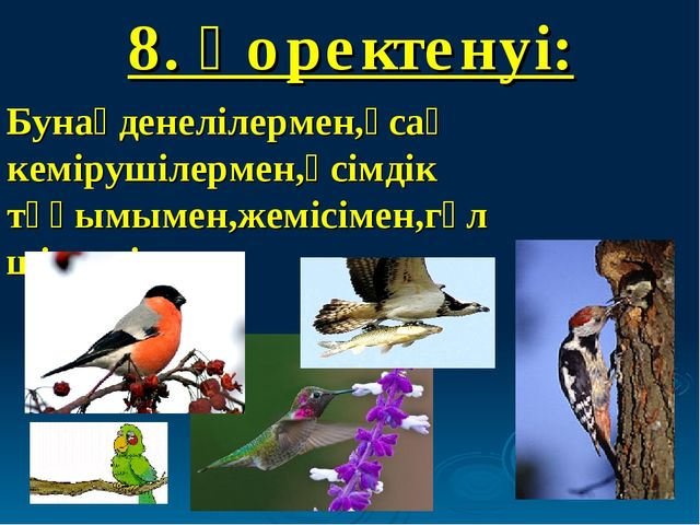8. Қоректенуі: Бунақденелілермен,ұсақ кемірушілермен,өсімдік тұқымымен,жемісі...