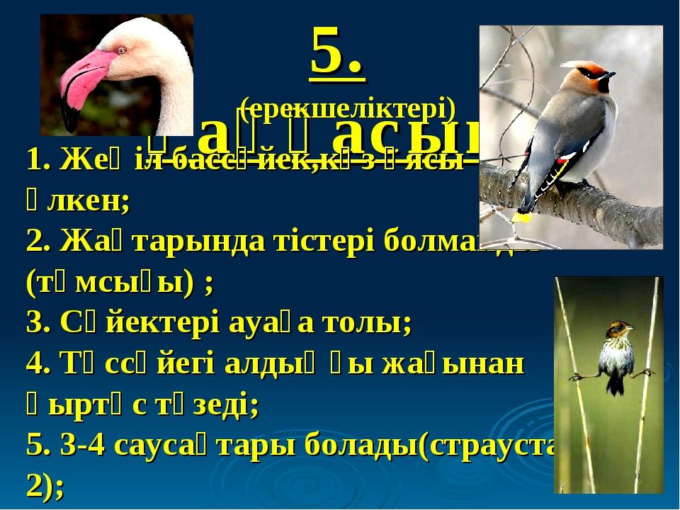 5. Қаңқасын: (ерекшеліктері) 1. Жеңіл бассүйек,көз ұясы үлкен; 2. Жақтарында...