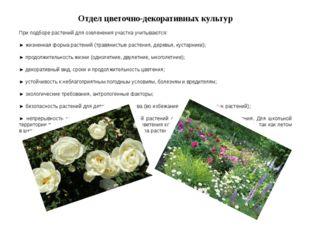 Отдел цветочно-декоративных культур При подборе растений для озеленения участ