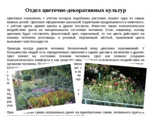 Отдел цветочно-декоративных культур Цветовые отношения, с учётом которых подо