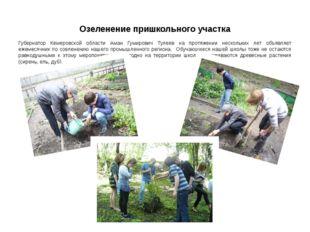 Озеленение пришкольного участка Губернатор Кемеровской области Аман Гумирович