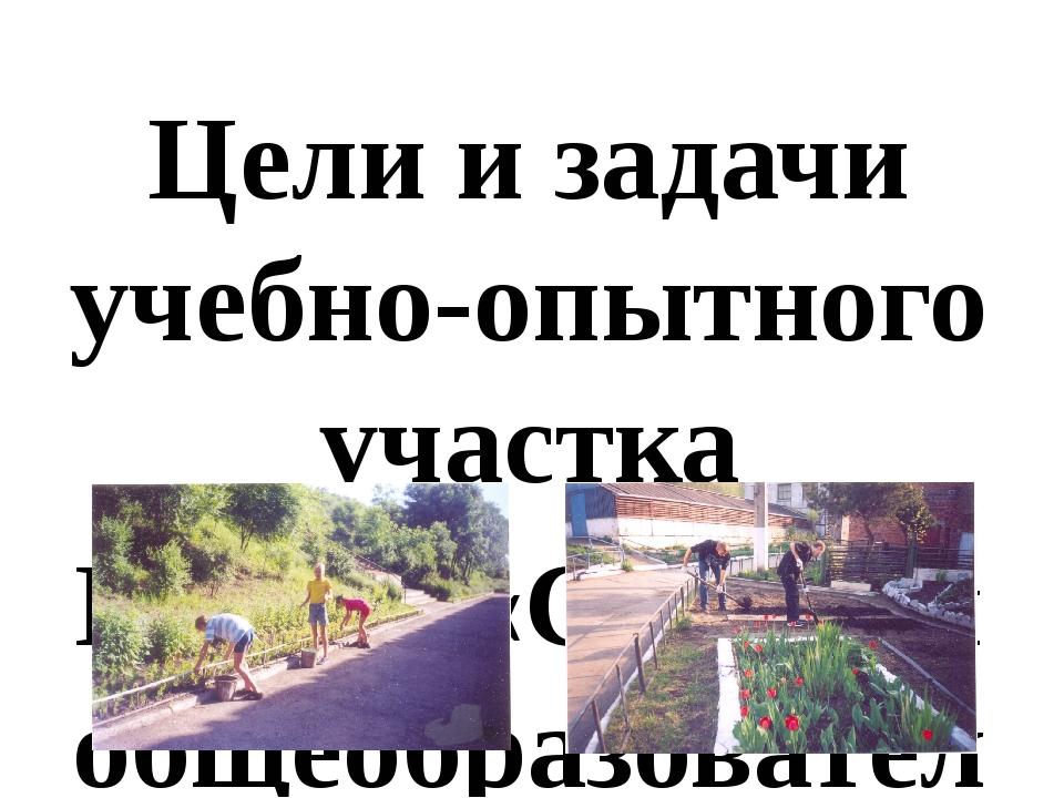 Цели и задачи учебно-опытного участка МБОУ «Средняя общеобразовательная школа...