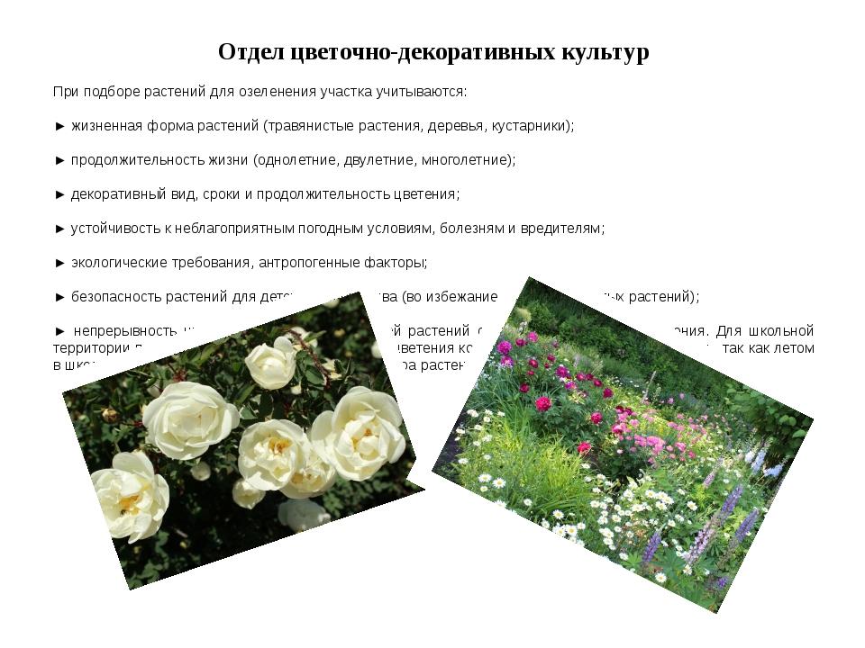 Отдел цветочно-декоративных культур При подборе растений для озеленения участ...
