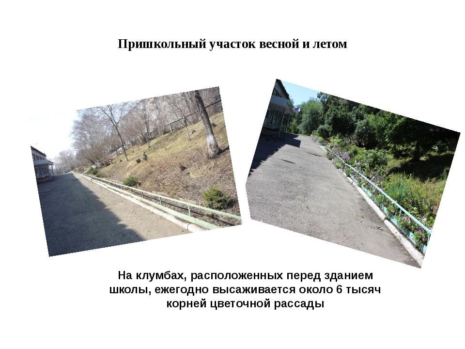 Пришкольный участок весной и летом На клумбах, расположенных перед зданием шк...