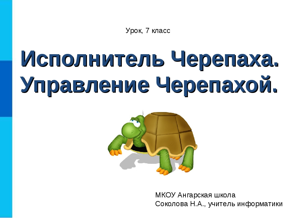 черепаха исполнителем знакомство с