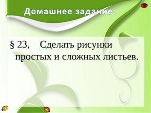 § 23, Сделать рисунки простых и сложных листьев.