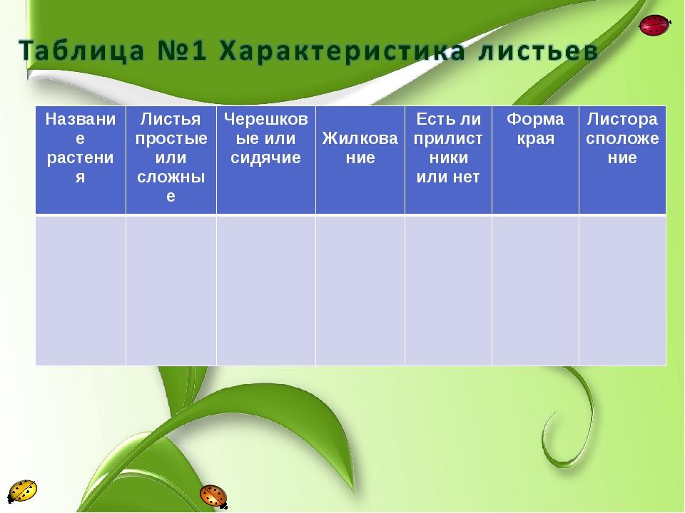 Название растенияЛистья простые или сложныеЧерешковые или сидячие Жилкован...
