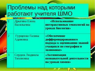 Проблемы над которыми работают учителя ШМО 1 Дрыгина Елена Васильевна «Исполь