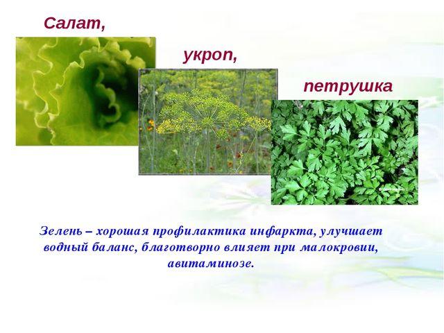 Салат, укроп, петрушка Зелень – хорошая профилактика инфаркта, улучшает водн...