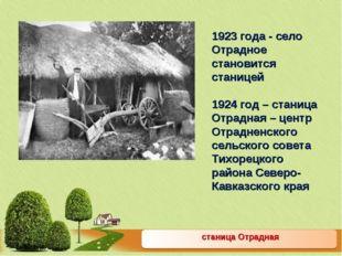 станица Отрадная 1923 года - село Отрадное становится станицей 1924 год – ст