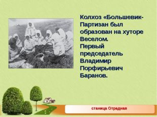 станица Отрадная Колхоз «Большевик-Партизан был образован на хуторе Веселом.