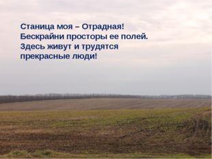 Станица моя – Отрадная! Бескрайни просторы ее полей. Здесь живут и трудятся
