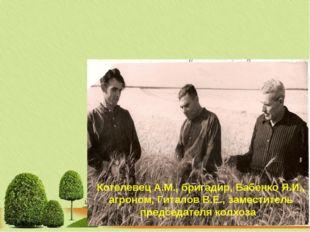 Котелевец А.М., бригадир, Бабенко Я.И., агроном, Гиталов В.Е., заместитель пр