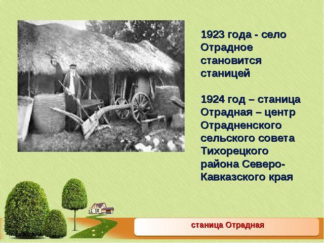 станица Отрадная 1923 года - село Отрадное становится станицей 1924 год – ст...