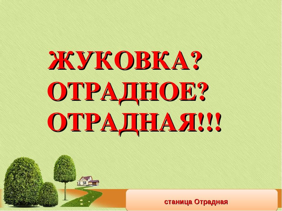 станица Отрадная ЖУКОВКА? ОТРАДНОЕ? ОТРАДНАЯ!!!