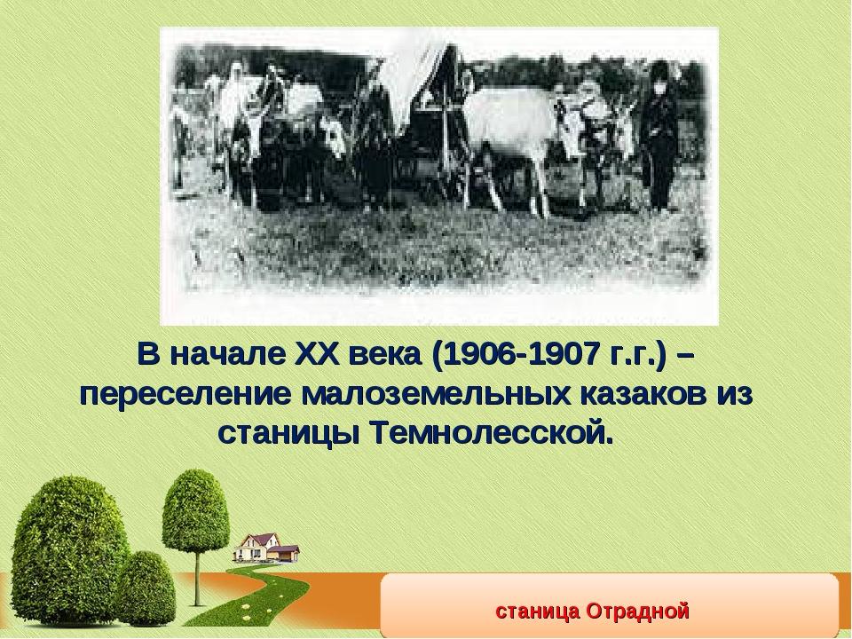 станица Отрадной В начале ХХ века (1906-1907 г.г.) – переселение малоземельны...