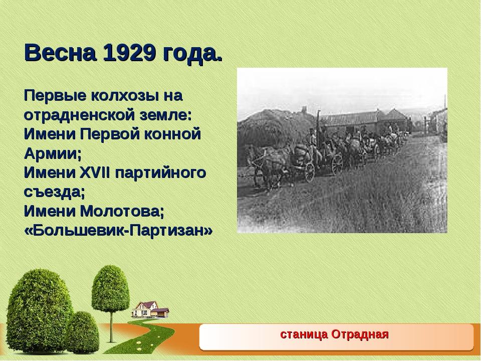 станица Отрадная Весна 1929 года. Первые колхозы на отрадненской земле: Имени...