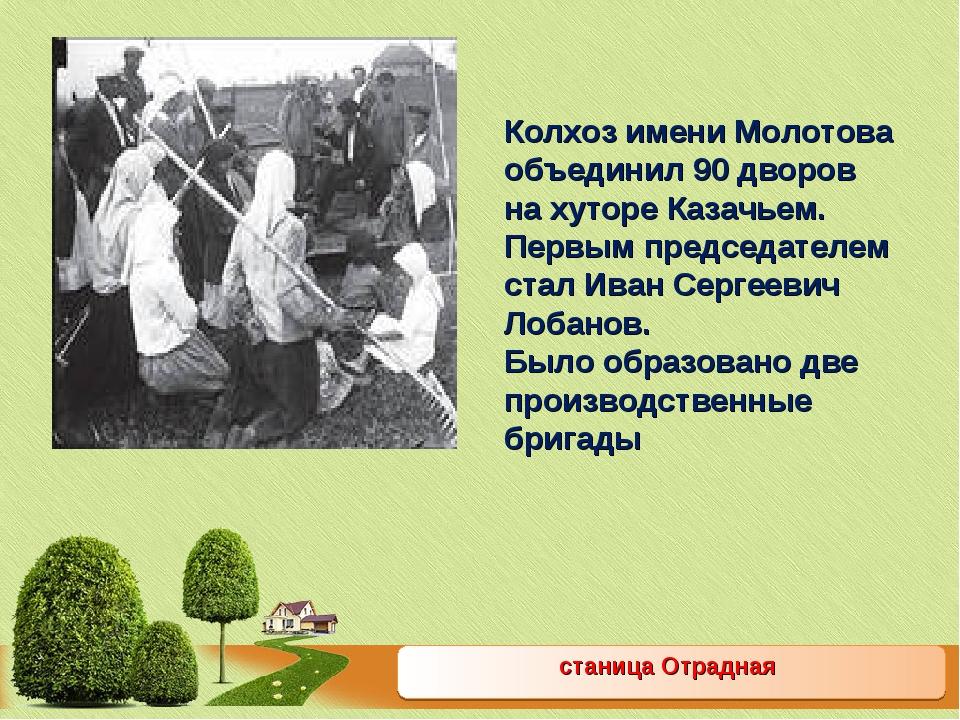 станица Отрадная Колхоз имени Молотова объединил 90 дворов на хуторе Казачьем...
