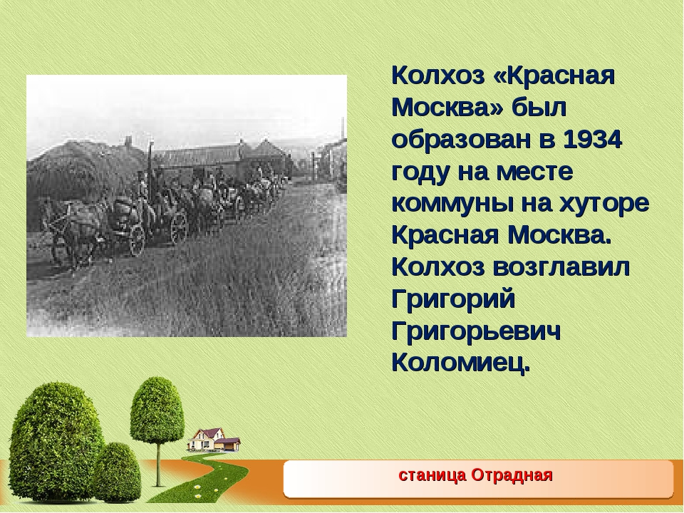станица Отрадная Колхоз «Красная Москва» был образован в 1934 году на месте к...