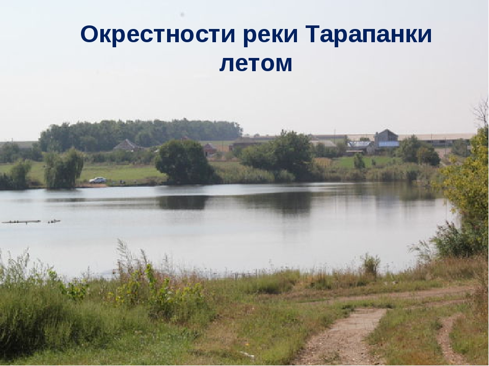 Окрестности реки Тарапанки летом