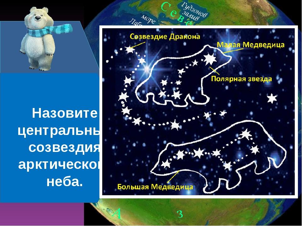 Что значит слово «Арктика»? Назовите центральные созвездия арктического неба.