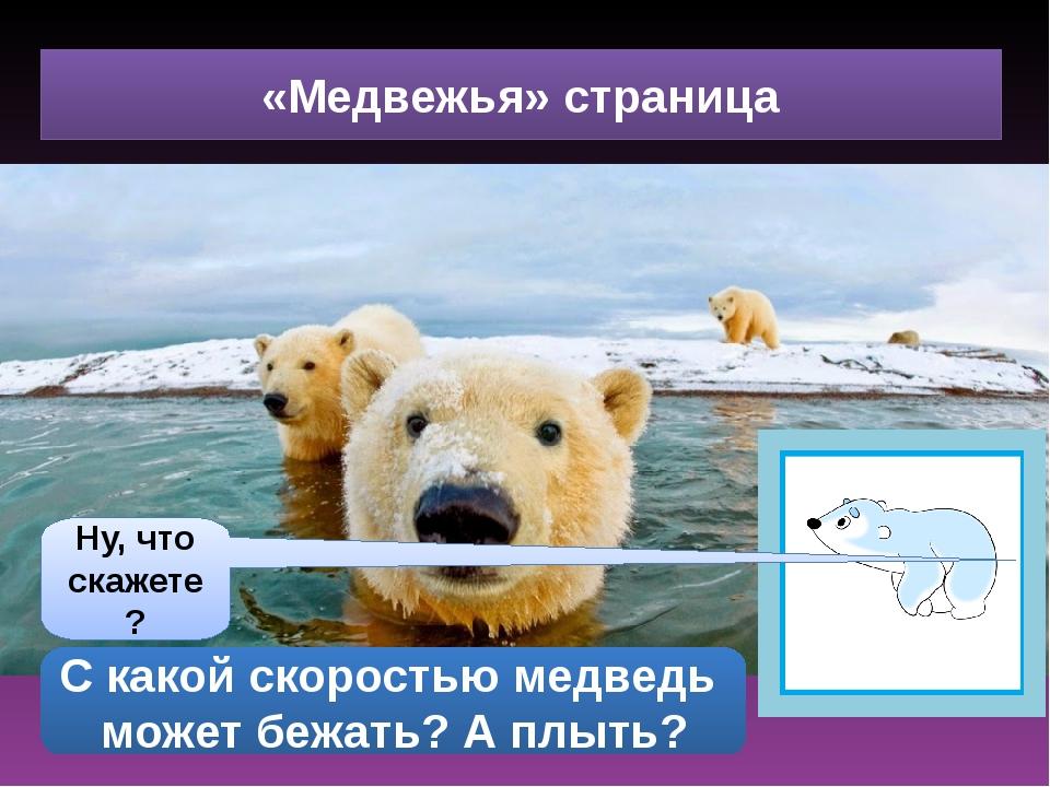 «Медвежья» страница Ну, что скажете? С какой скоростью медведь может бежать?...