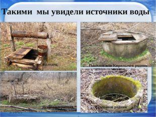 Такими мы увидели источники воды Папилов или Кирилычев родник Степанов родни