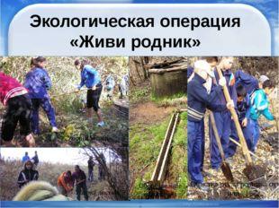 Экологическая операция «Живи родник» Уборка мусора Очистка русла родника от и
