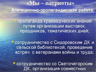 «Мы – патриоты» Агитационно-пропагандисткая работа: пропаганда краеведческих