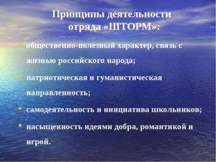 Принципы деятельности отряда «ШТОРМ»: общественно-полезный характер, связь с