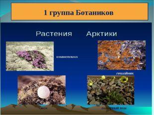 1 группа Ботаников