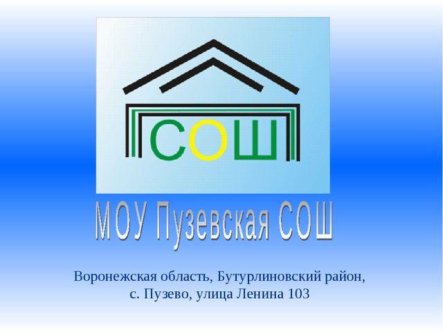 Воронежская область, Бутурлиновский район, с. Пузево, улица Ленина 103