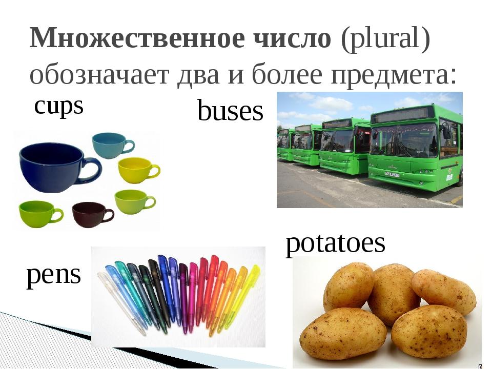 Множественное число(plural) обозначает два и более предмета: cups buses pens...