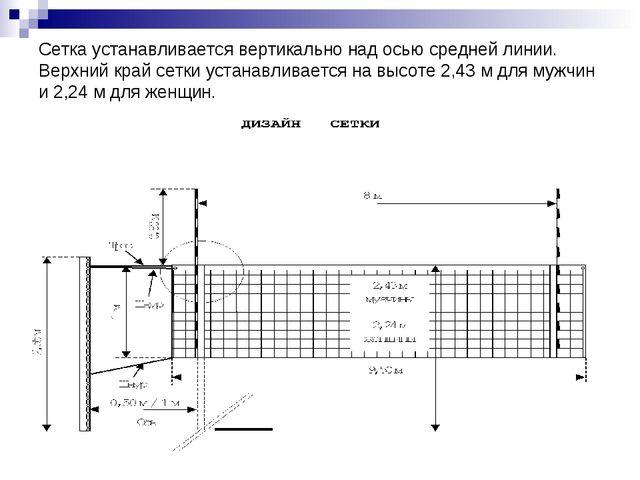 Сетка устанавливается вертикально над осью средней линии. Верхний край сетки...