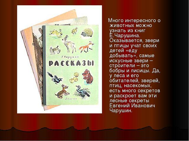 Много интересного о животных можно узнать из книг Е.Чарушина. Оказывается, з...