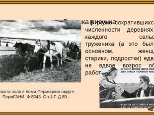 Пахота поля в Коми-Пермяцком округе. ПермГАНИ. Ф.8043. Оп.1-Г. Д.89.. В рез