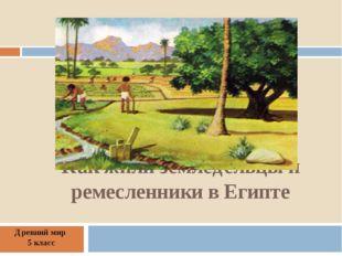 Как жили земледельцы и ремесленники в Египте Древний мир 5 класс