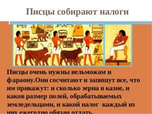 Писцы собирают налоги Писцы очень нужны вельможам и фараону.Они сосчитают и з