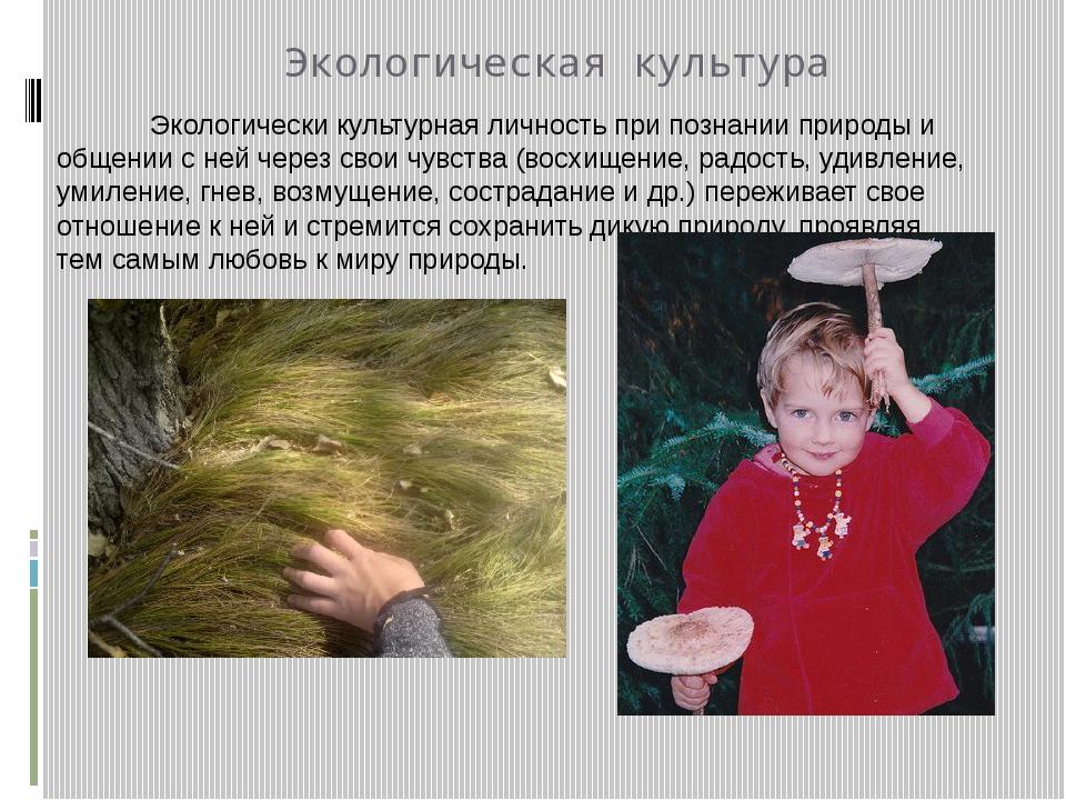 Экологическая культура Экологически культурная личность при познании природы...