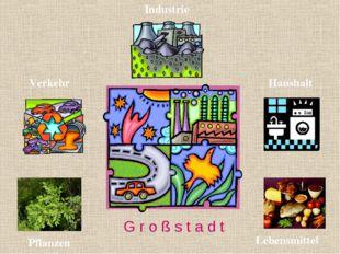 Verkehr Pflanzen Lebensmittel Haushalt G r o ß s t a d t Industrie