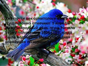 Уже почти век орнитологи всего мира традиционно отмечают 1 апреля Международ